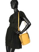 Bucket Bag Cabriole Leather Etrier Yellow cabriole ECABR04-vue-porte