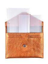 Leather Wallet Etincelle Etrier Gold etincelle irisee EETI054-vue-porte