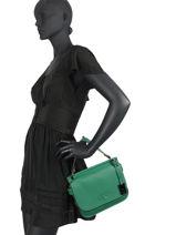 Top Handle Ecuyer Leather Etrier Green ecuyer EECU01-vue-porte