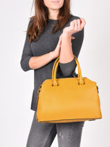 Top Handle Balade Leather Etrier Yellow balade EBAL06-vue-porte