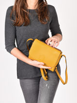 Crossbody Bag Balade Leather Etrier Yellow balade EBAL11-vue-porte