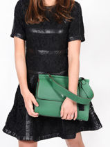 Top Handle Ecuyer Leather Etrier Green ecuyer EECU03-vue-porte