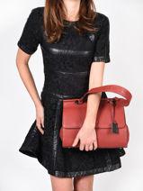 Top Handle Ecuyer Leather Etrier Red ecuyer EECU03-vue-porte