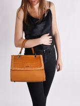 Top Handle Arizona Leather Etrier Black arizona EARI23-vue-porte