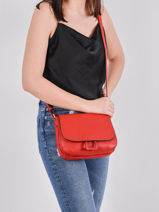 Crossbody Bag Tradition Leather Etrier Red tradition EHER23-vue-porte