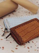 Purse Leather Etrier Brown arizona EARI96