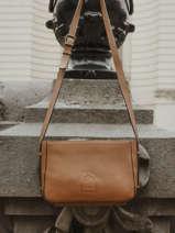 Shoulder Bag Balade Leather Etrier Brown balade EBAL05