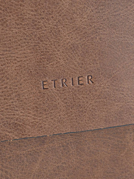 Crossbody Bag Etrier Brown spider S83811 other view 1