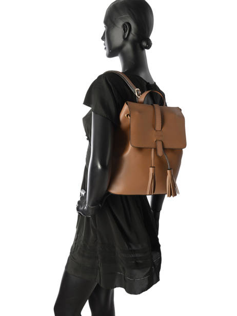 Backpack Etrier Brown kyo EKY608 other view 2