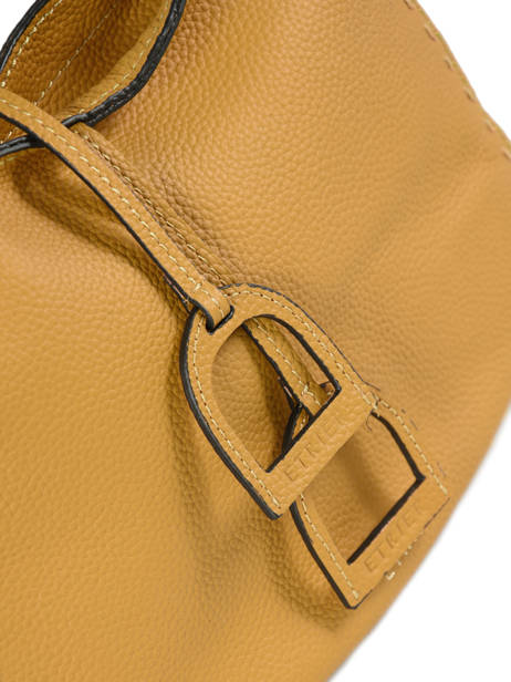 Crossbody Bag Tradition Leather Etrier Yellow tradition EHER003A other view 1