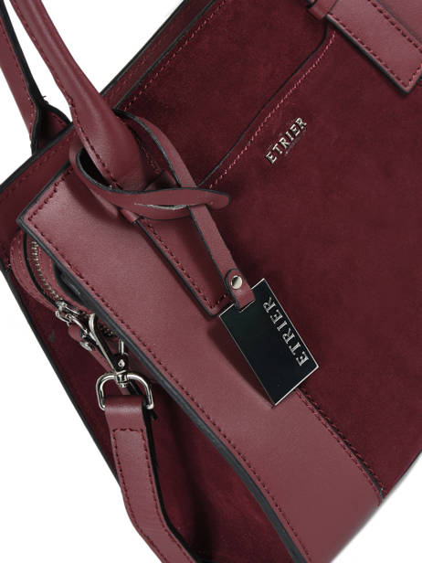Trapeze Caleche Leather Etrier Red caleche ECAL002B other view 1